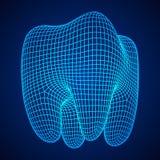 Сетка Wireframe зуба иллюстрация вектора