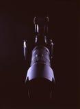 сетноая-аналогов черная камера Стоковые Изображения