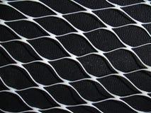 сетчатая белизна Стоковая Фотография RF