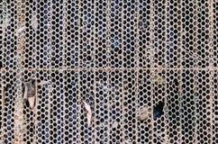 Сетчатая крышка трубы Стоковое Фото