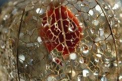 сетчатый physalis Стоковая Фотография RF
