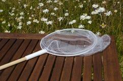 Сеть бабочки в саде Стоковые Фотографии RF
