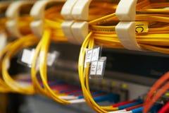 сеть волокна оптическая Стоковое Фото