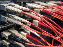 сеть волокна оптически Стоковая Фотография