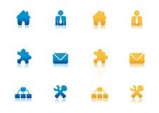 сеть голубой иконы золота установленная