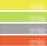 сеть знамен флористическая Стоковая Фотография