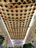 Сеть зонтика цветка Солнця Стоковая Фотография