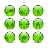 сеть листьев икон eco стеклянная зеленая Стоковое Изображение RF
