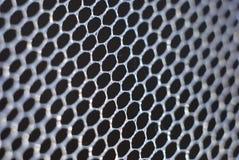 сеть москита Стоковые Изображения RF