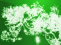 сеть нервная Стоковая Фотография RF