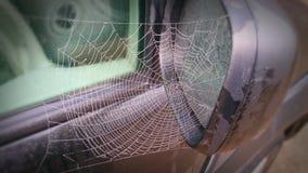Сеть паука на автомобиле Стоковое Изображение