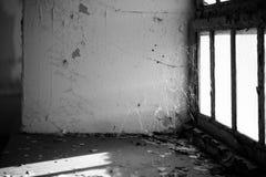 Сеть паука окном Стоковая Фотография
