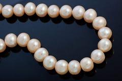 сеть перлы ожерелья утра росы Стоковые Фото