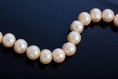 сеть перлы ожерелья утра росы Стоковое Изображение