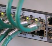 Сеть привязывает в пульте временных соединительных кабелей для соединения comput Стоковое фото RF