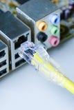 Сеть провода кабеля крупного плана подключенная к компьютеру Стоковая Фотография