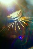 Сеть радуги в предпосылке конспекта arahnoid солнца Стоковое Изображение
