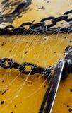 Сеть росы Стоковая Фотография RF