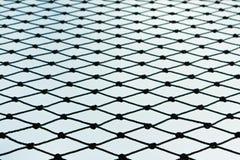 сеть Стоковые Изображения