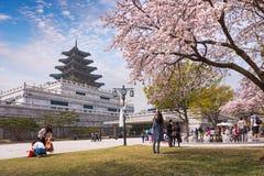 СЕУЛ - 10-ОЕ АПРЕЛЯ 2016: Перемещение дворца Gyeongbokgung весной  Стоковое Изображение