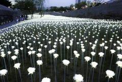 Сеул, Корея 19-ое мая 2017: Площадь дизайна Dongdaemun Стоковые Фото