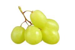 Селективный фокус виноградин зеленого цвета пука изолированных на белизне Стоковые Фото