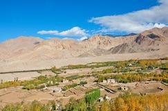 Село в пустыне Стоковые Фото