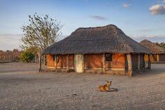 Сельская африканская усадьба стоковые фотографии rf