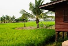 Сельская жизнь Стоковая Фотография
