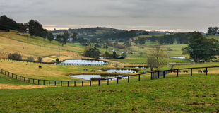 Сельская местность Австралии Стоковые Изображения