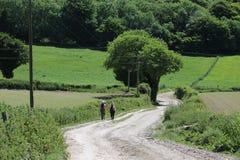 Сельская местность Англия ходоков Стоковое Изображение RF