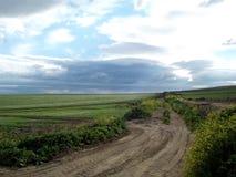 Сельская местность Андалусии на небе Dramstic Стоковое Фото