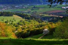 Сельская местность весной Стоковая Фотография RF