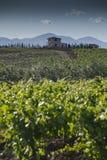 Сельская местность Alcamo. Стоковая Фотография