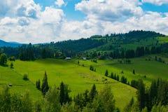 Сельская местность в гористых местностях стоковые фото