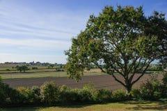 Сельская местность в Нормандии Стоковое Фото