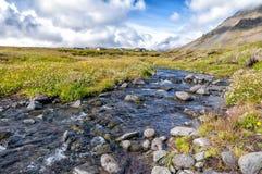 Сельская местность в полуострове Snaefellsnes, Исландии Стоковая Фотография RF