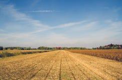 Сельская местность Квебека после сбора стоковое изображение rf