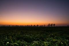 Сельская местность на восходе солнца Стоковое Изображение