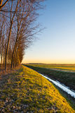 Сельская местность на восходе солнца Стоковое Изображение RF