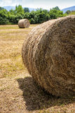 Сельская местность поля связки связок сена круглая Стоковая Фотография RF
