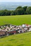 Сельская местность резать овец Бродвей Cotswolds Стоковое фото RF