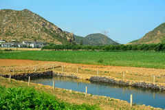 Сельская местность, Северная Корея стоковые изображения