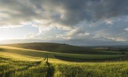 Сельская местность спусков красивого ландшафта панорамы южная в лете Стоковые Фото