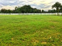 Сельская местность с зеленой травой Стоковое Изображение RF
