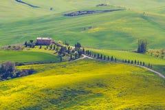 Сельская местность Тосканы около Pienza, Италии Стоковая Фотография