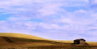 Сельская местность Тосканы Стоковое фото RF