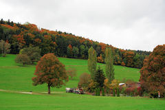 Сельская местность Швейцария Стоковое Изображение