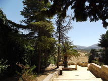 Сельская местность Ronda, Андалусия Стоковое фото RF