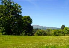 Сельская местность Welsh Стоковое фото RF